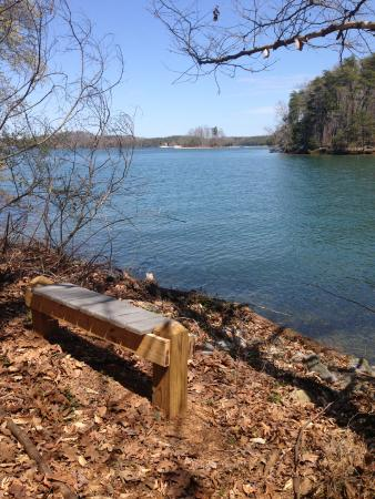 Huddleston, VA: Along many of the trails there are benches to just sit and enjoy the view