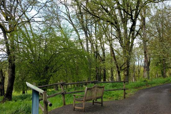 Oregon Garden Resort Silverton Oregon. Entrance - Picture of Oregon ...
