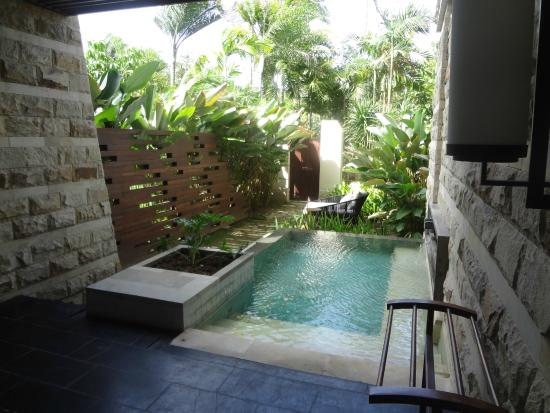 Private plunge pool room picture of sofitel bali nusa for Garden plunge pool uk