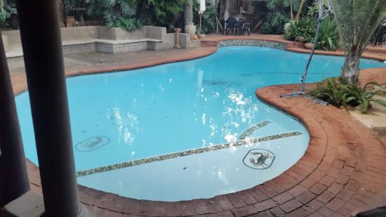 Bohemian Rhapsody Guest House  &  InnTshwane Lodge: nice swimming pool