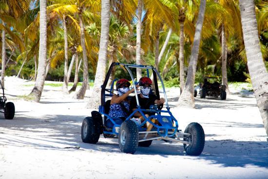 Punta Cana Expert