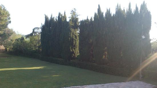 Villa dei Priori: Parco