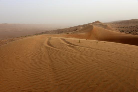 Al Qabil Rest House: Wahiba Sands