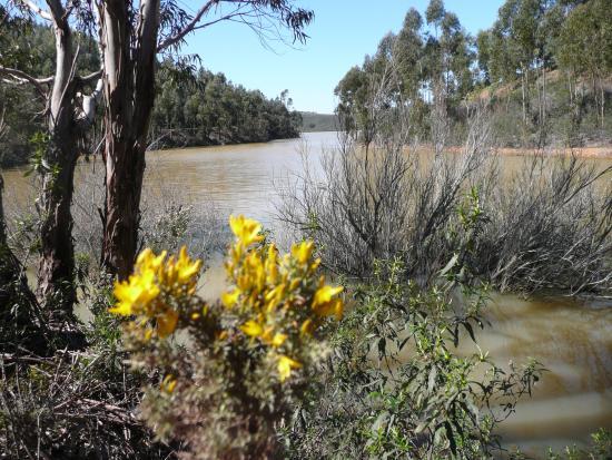 Algarve, Portugal: Naturschutz- u. Wandergebiet für Genießer