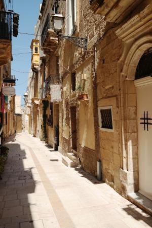Indulgence Divine: The street