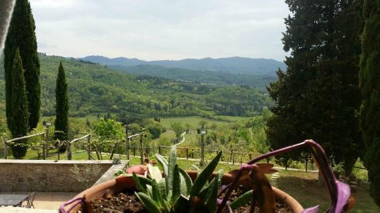"""Allegro Agriturismo Argiano: """"Senza parole"""""""
