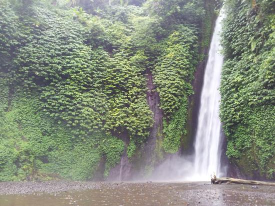 Puri Alam Bali Bungalows : The waterfall attraction nearby