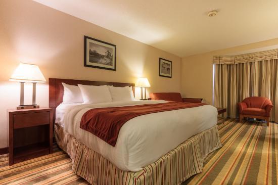BEST WESTERN Belleville: King Room