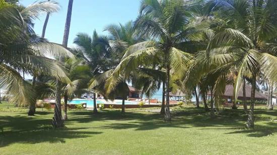 Coconut Grove Beach Resort: hotel grounds