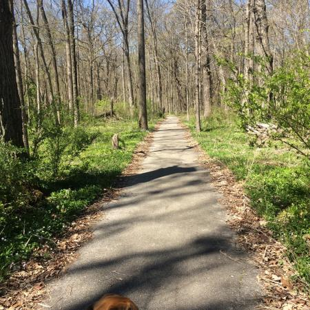 Pilcher Park Nature Center Reviews
