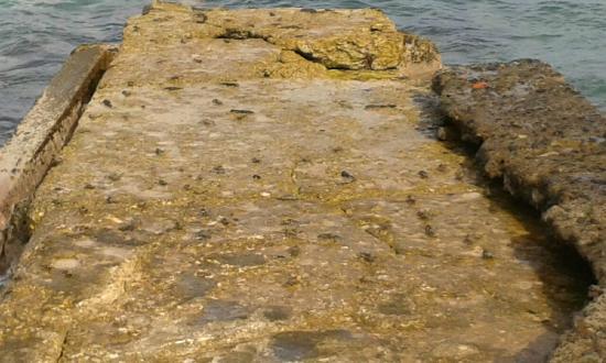 Sandy Point Village: Crabs on the jetty