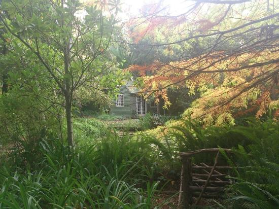 High Hopes of Greyton : View from the garden