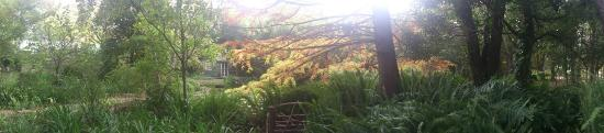 High Hopes of Greyton : Garden panoramic view