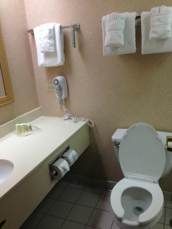 Holiday Inn Chicago Downtown: bathroom