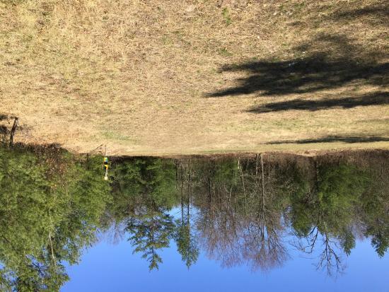 Tower Ridge Recreational Area