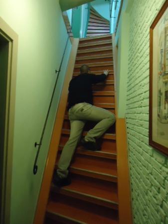 Hotel Internationaal: Mi esposo que es alto, tratanto de subir...