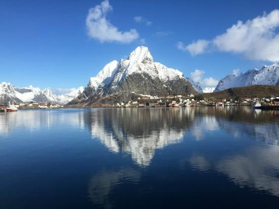 Reine Rorbuer: From a walk around the property