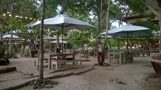 Restaurante foto di the green house restaurant liberia - Home restaurant normativa ...