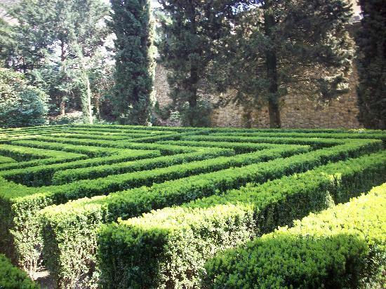 Dio bacco situato all 39 interno del palazzo protettore picture of palazzo giardino giusti - I giardini di bacco ...