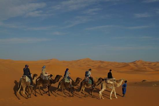 Sahara Trips Day Tours