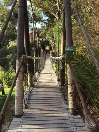 Camps Bay Retreat: The rope bridge