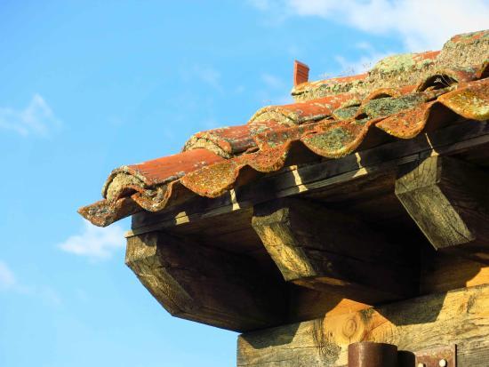 imagen El Fogon de Concha en Torre Val de San Pedro