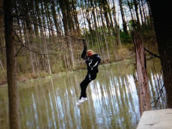 Obstacle Course Picture Of Go Ape Zipline Adventure Park Bear Tripadvisor