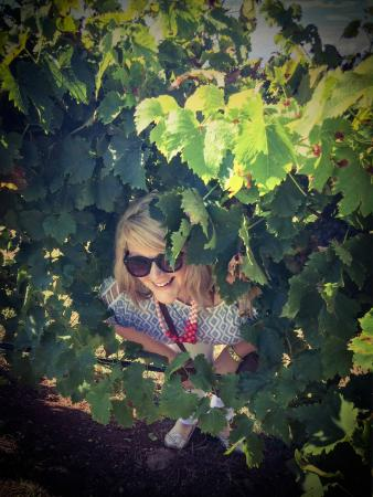 Heidis Hunter Valley: Having fun in the vines
