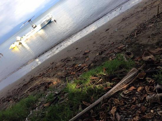 Puerto Jimenes, Costa Rica: El Tarpon de Osa