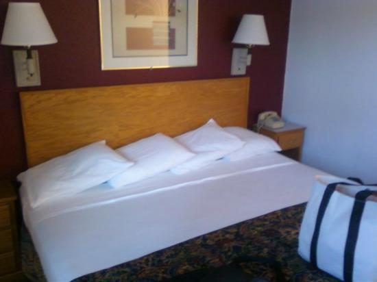 Rodeway Inn & Suites: King sized bed