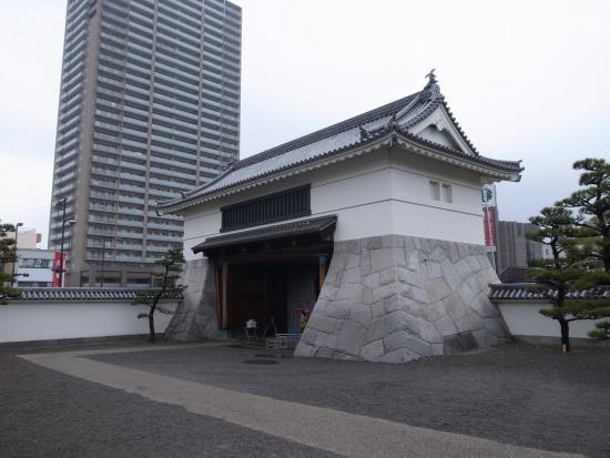 Okazaki Park: 後ろのマンションはいかがなものでしょうか?