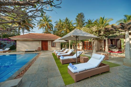 Shreyas Yoga Retreat: Lounging by the Pool