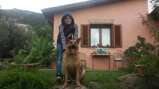 Villamassargia, Italia: Agriturismo S' Ortu Mannu A Casa Mia