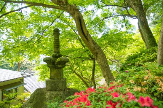 Daikozenji Temple: 八万四千塔最初の塔