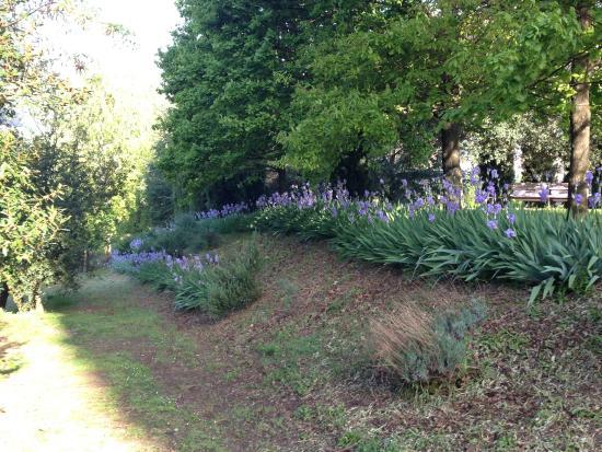 Fattoria Villa Le Sorgenti : Dettaglio del parco