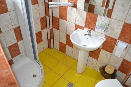 Bechet, رومانيا: Bathroom