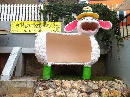 The Memories Sheep Farm