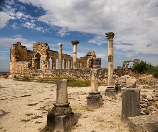 Badrane Tours: Volubilis - Morocco