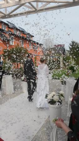 Hotel Azyl: Wonderful wedding, happy days spent celebrating it at this lovely hotel.