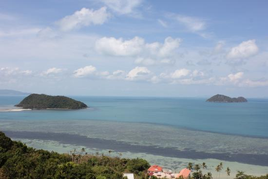 Saaree Seaview Resort: View from the main yoga deck