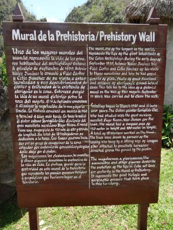Mural de la prehistoria picture of mural de la for Mural de la prehistoria