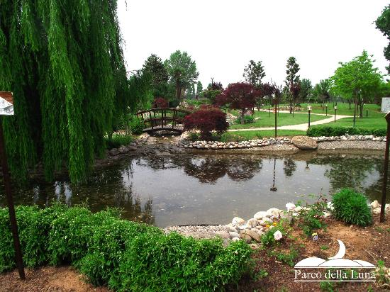 Il laghetto foto di parco della luna cassina de 39 pecchi for Il laghetto