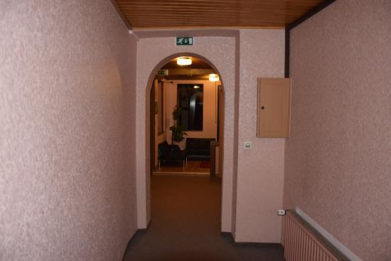Ellenzer Goldbäumchen: Corridor