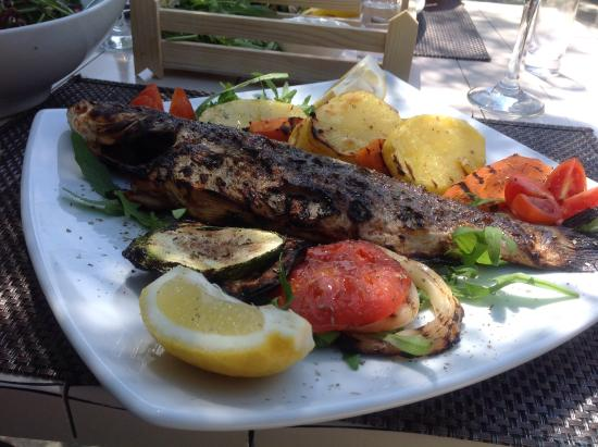 Sithonia, Greece: Al fresco lunch