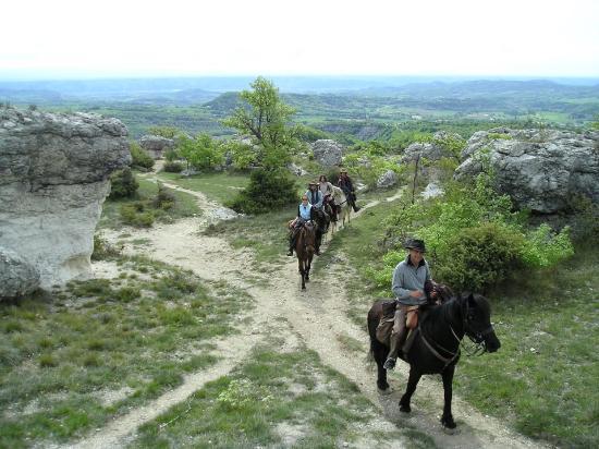 Centre Equestre Les Crins de Gaia