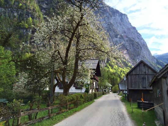 Gasthof Hirlatz : The walk to the Guesthouse