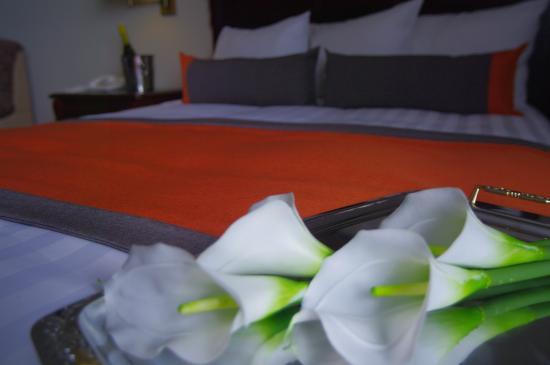 Hotel Plante: Suite