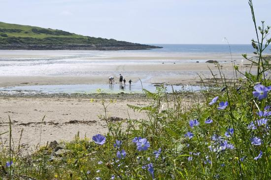 Brighouse Bay Holiday Park: Our Beach