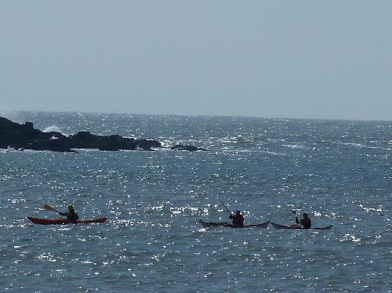 Brighouse Bay Holiday Park: Some of our kayaking enthusiasts