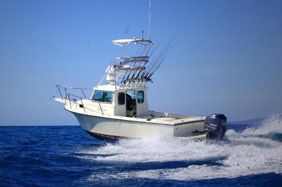 Allwater Charters Boat Als Parker Pilothouse Sportfishing Dana Point Harbor